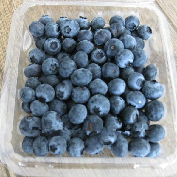 frozen blueberry fruit--iqf blueberries wild fresh blueberries wholesale