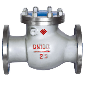 Stainless Steel Flange Type Swing Check Valve