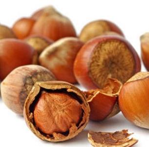 Supply good quality and popular harzelnut