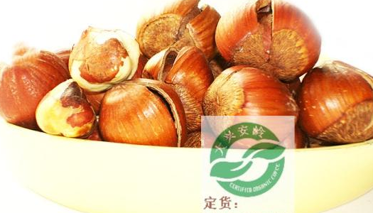Supply good quality and popular harzelnut