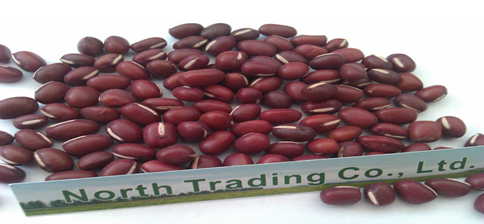 Adzuki Bean/Small Red Beans( New crop,Heilongjiang origin, Hps ,Polished)