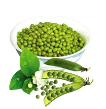 MUNG BEAN EXTRACT POWDER