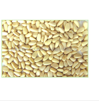 Chinese Pine Nut Kernels