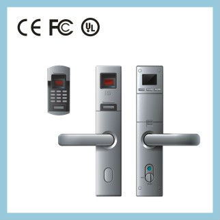 fingerprint lever lock