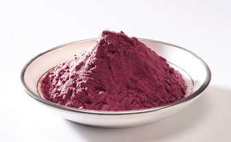 Blackcurrant Juice Powder