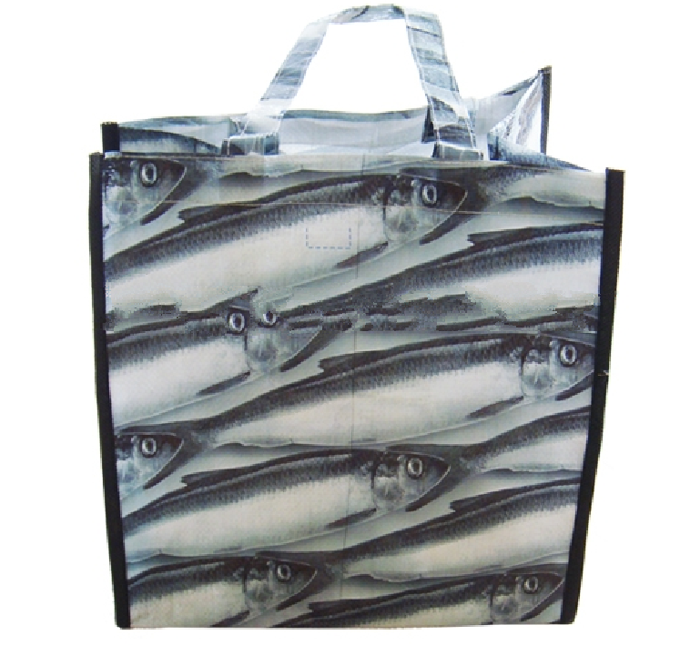 Recyclable & Reusable Shopping Bag