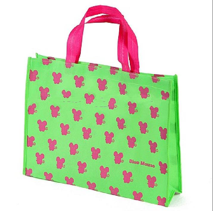 Recyclable & Reusable Shopping Bag; PP Woven Bag; Beautiful Shopping Bag