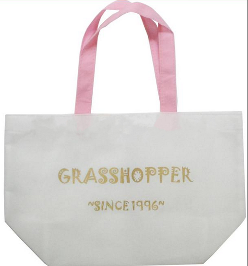 Custom Shopping Bag, Promotional Bag; Cheap Non-Woven Shopping bag