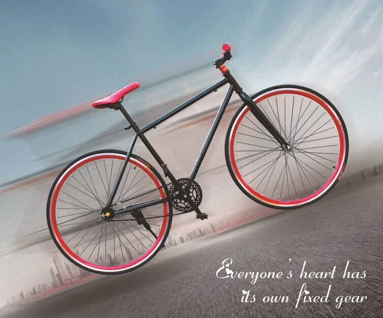 colorful Mountain bicycle for hot sale /cheap bmx bike No.wzd-zxc005 New style