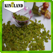 dried green raisin with best quality