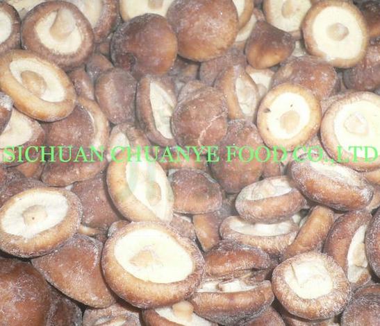IQF Shiitake Mushroom Cultivated