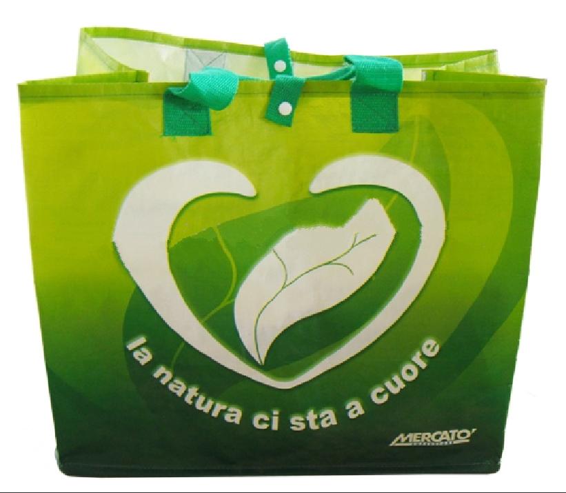 Recyclable & Reusable Shopping Bag