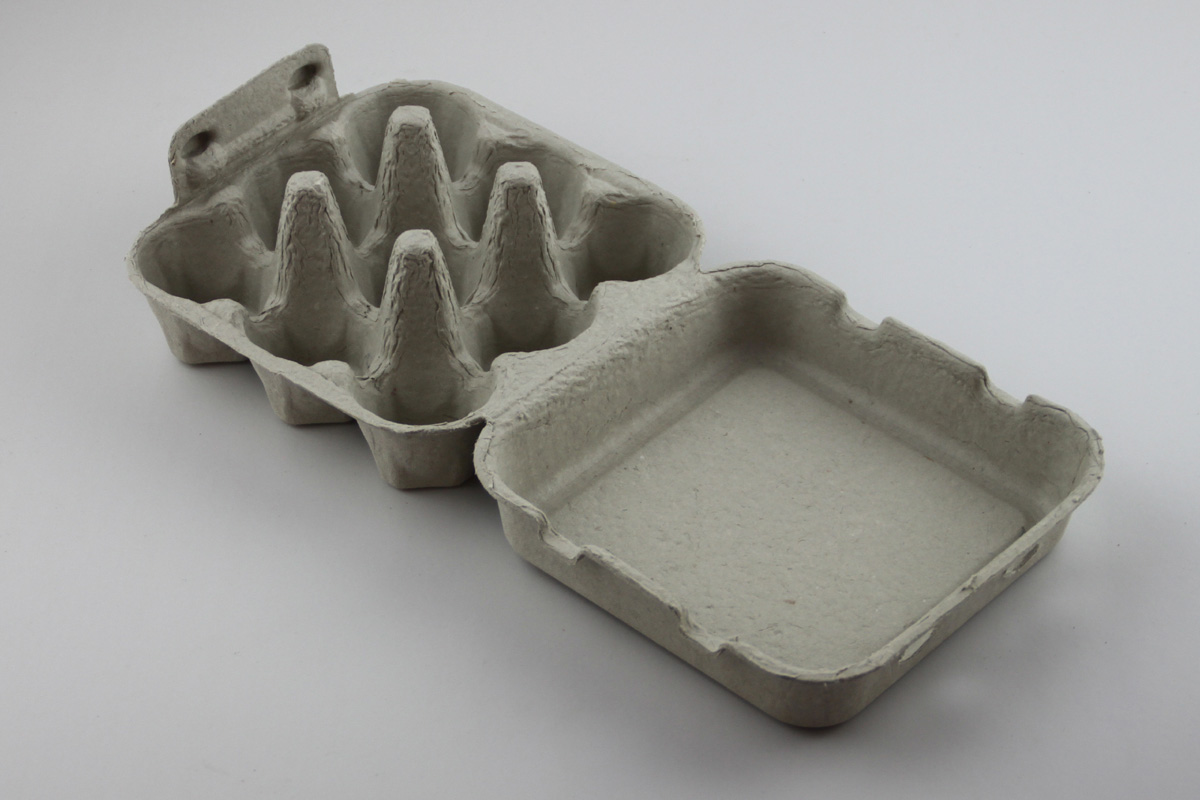 bagasse packaging design