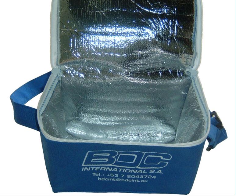 Custom ice cooler bag for lunch