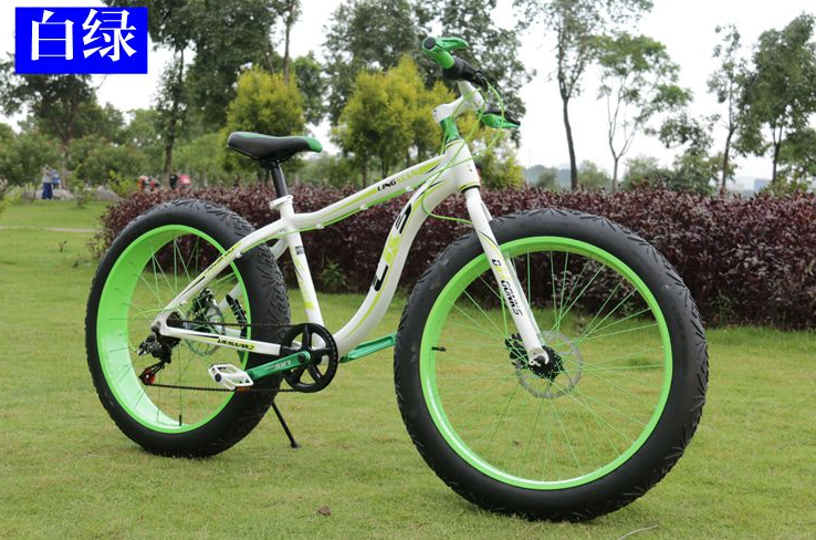 snow bicycle/snow bike/fat bik/fat bicycle (TF-SNOW BIKE 003)