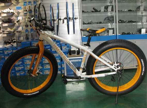 snow bicycle/snow bike/fat bik/fat bicycle (TF-SNOW BIKE 003)
