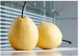 nutritious Chinese ya pear