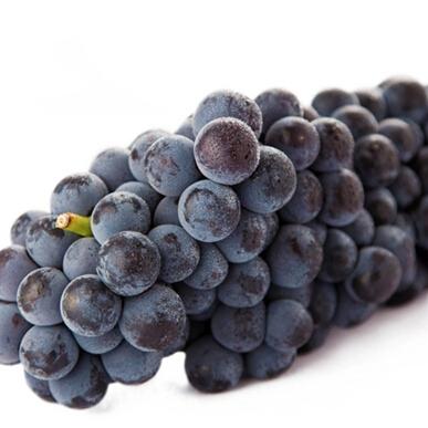Summer Sumer Grapes