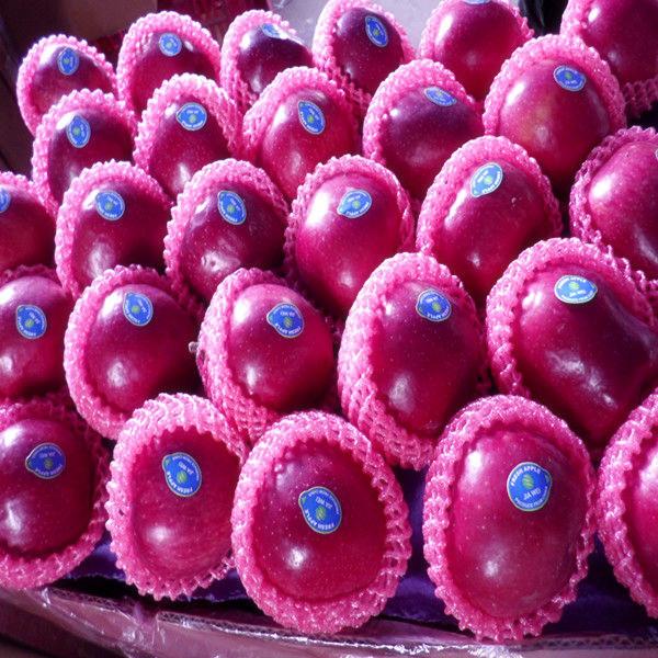 Apple Type and Huaniu Variety huaniu apple sweet apple fruit