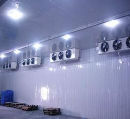 cold storage freezer