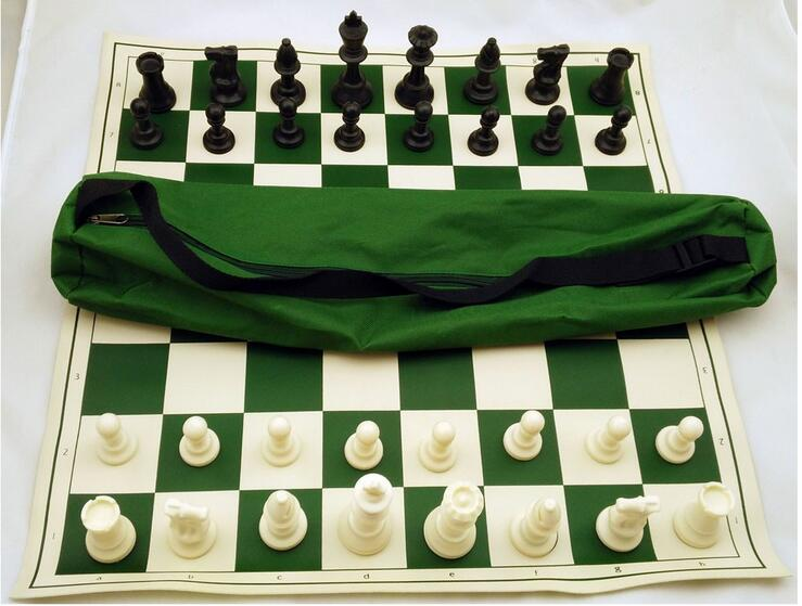 travelling plastic chess set in carry bag