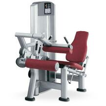 Hot Sales Leg Curl /Professional Leg Curl /Top Quality Leg Curl