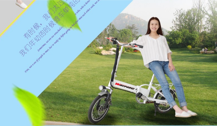 electric bycicle