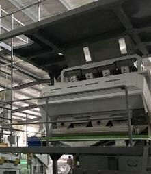 Multifunctional CCD grains optical sorter machine in China
