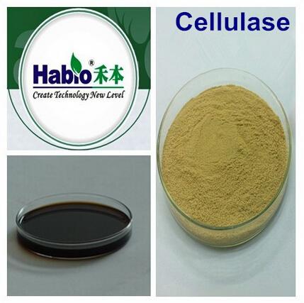 Cellulase, Textile wash