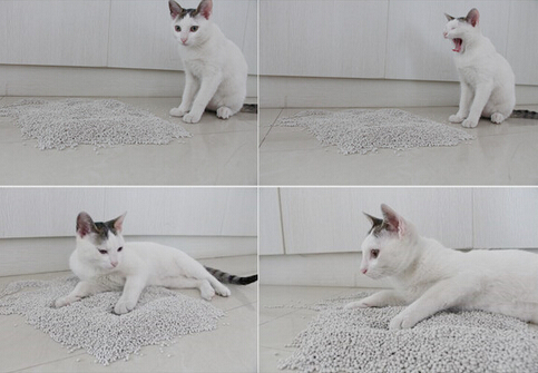 100% Natural Ultra Premium Clumping Cat Litter, Clumping Cat Sand, Bentonite Cat Litter