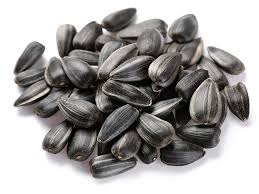 wholesale sunflower seeds Organic sunflower seeds free sample
