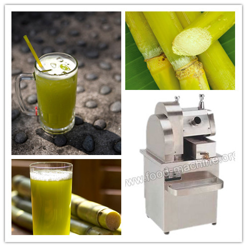 Vertical Sugarcane Juice Extractor