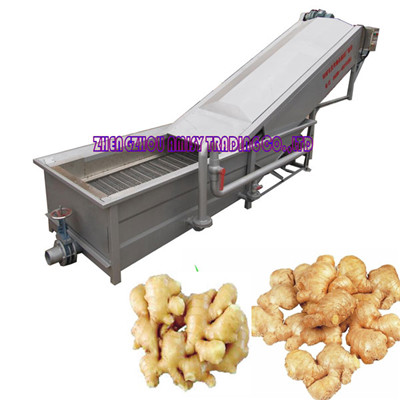 Ginger Washing Machine- High Pressure Spray Type