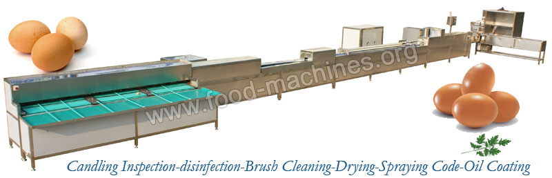 Egg Cleaning Grading Machine