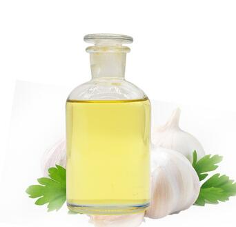 HACCP, ISO Certified Pure Fennel Essential Oil At Wholesale