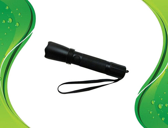 IP65 Explosion-proof Flashlight