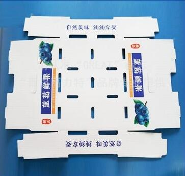 disposable paper printing foldable fruit packing transfer case container paper box