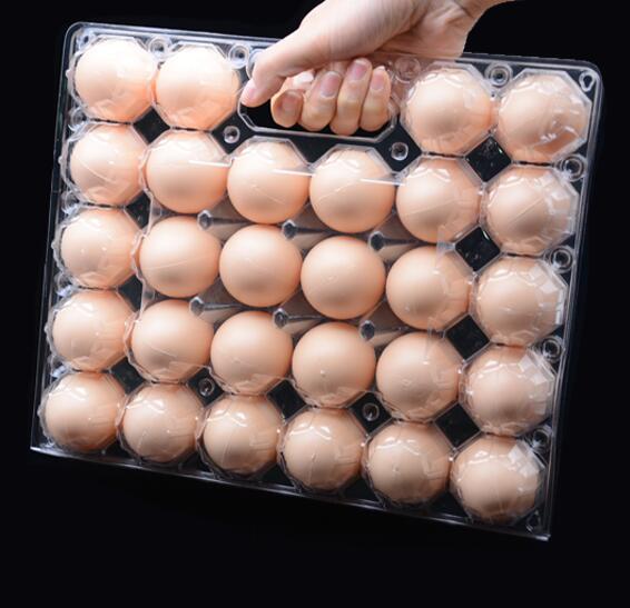 Unique design plastic chicken egg crate with handle