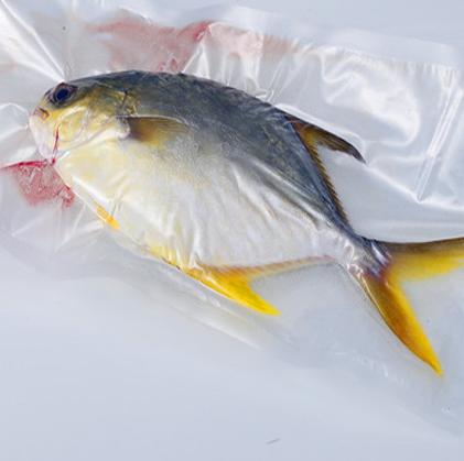 Foodsaver Plastic Packaging Vacuum Bag for Fish