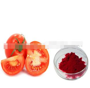 100% Pure plant extract tomato fruit extract with high quality lycopene