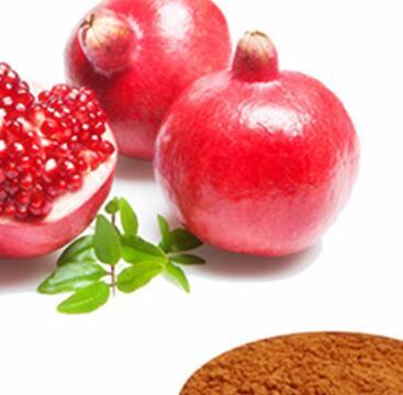 ellagic acid 70% pomegranate peel, pomegranate p e, pomegranate extract(ellagic acid 40%)