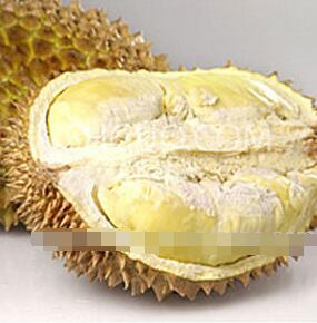 Organic Food Additive Freeze Drying Jackfruit Powder