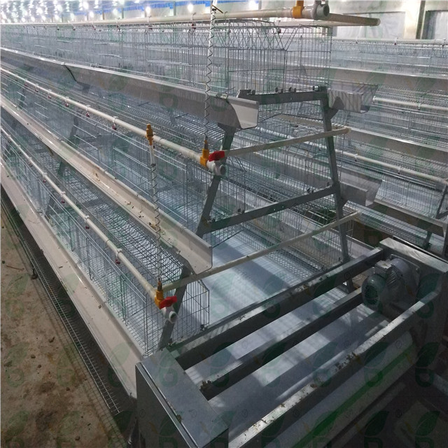 Layer battery cages for poultry chicken hens for sale