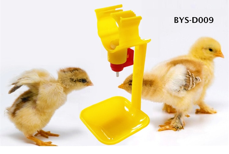 Nipple drinker with cup for chicken, Automatic poultry waterer for sale