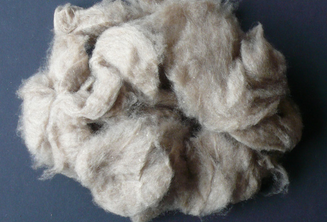 Dehaired Goat Raw Cashmere Wool Fiber sale