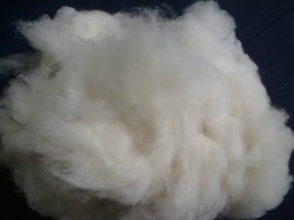 Dehaired Goat Wool Pure Combed Cashmere Yarn Fiber  for sale