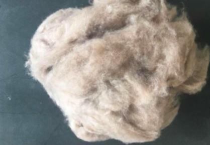 100% Pure Dehaired Merino Sheep Wool White Cashmere Fiber sale