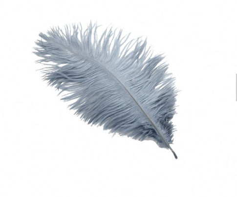 Leading Factory Feather Crafts Best-Selling High Quality Ostrich Feathers For Sale In Turkey