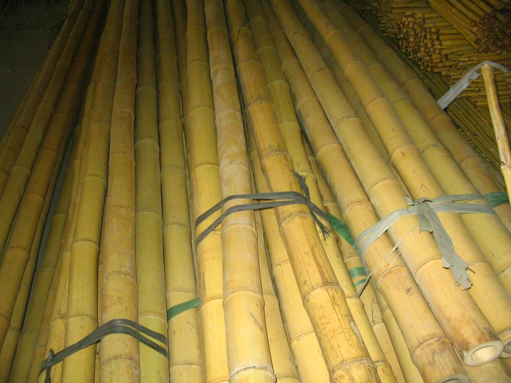 Wholesale natural bamboo raw material sale