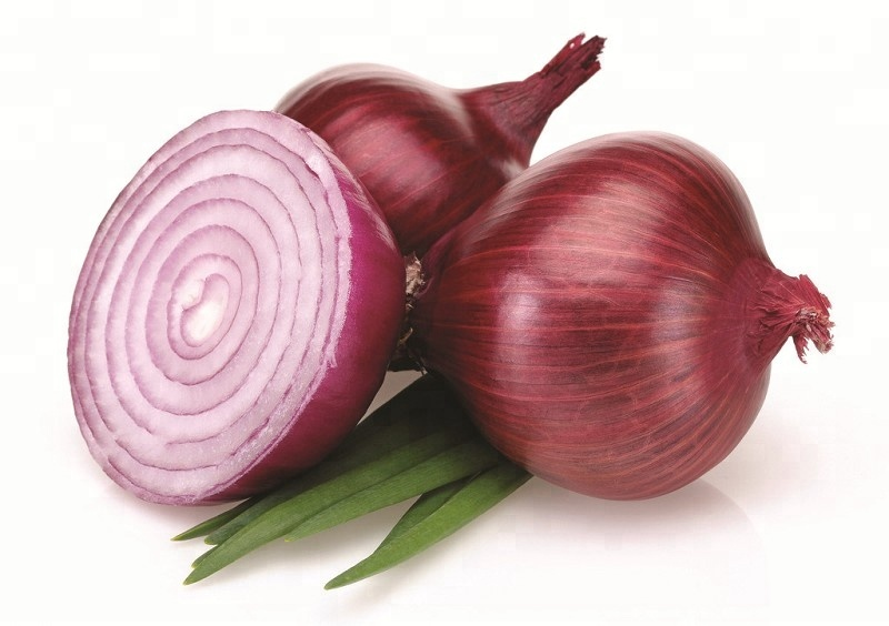 Round fresh red onions for sale